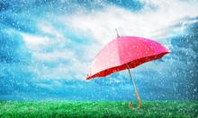 Protection Concept. Umbrella U...