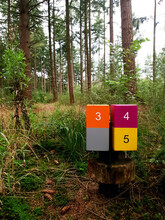 Wooden Sign Post Mile Marker On A Hiking Jogging Trail In A Forest