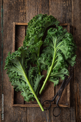 Obraz fresh green organic kale leaves - fototapety do salonu