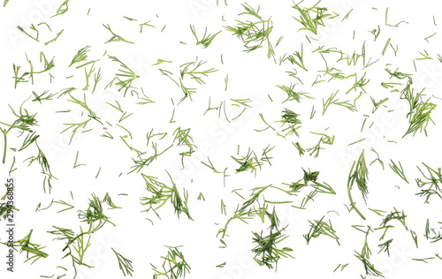 Tablou Canvas Fresh chopped, cut green dill isolated on white background, top view
