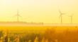 Leinwandbild Motiv Reed in a rural landscape in sunlight below a blue sky at sunrise in autumn