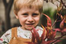 Little Boy Holding Up Autumn L...