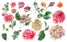 Watercolor Floral Set Of Vinta...