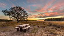 Picnic Table Under Beautiful S...