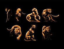 Wild Cats. Jaguar, Cheetah, Leopard, Panther.