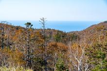 秋の知床 知床横断道路から見る紅葉の原野とオホーツク海(北海道・斜里町)