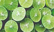 Lime Background. Close Up Shot...