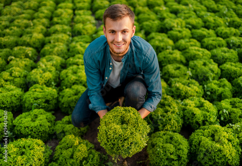 Fotografia Contented farmer lad holding a head of lettuce on a lettuce field top view