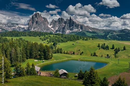 Garden Poster Meadow The landscape around Alpe di Siusi/Seiser Alm, Dolomites, Italy