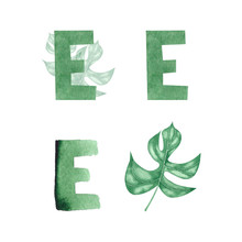 Watercolor Alphabet Letter E. Hand Drawn Green Letter Isolated On White. Perfect For Print, Poster And Logo