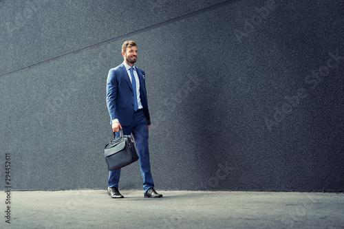 Obraz Walking business man with briefcase. - fototapety do salonu