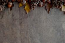 Great Autumn Coposition For La...