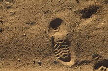 Footprints Of Beach Shoes In T...