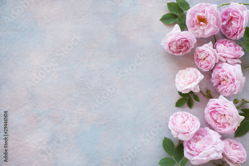 Valokuvatapetti Decorative background with garden pink roses, space for text, greetings