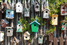 Birdhouses On Wooden Wall
