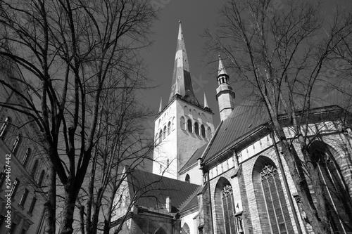 Tower of St Olaf's church (Oleviste kirik - kogudus) in Tallinn Estonia old town Canvas Print
