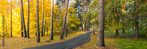 Fototapeta beautiful large panorama of an autumnal multicolor park with a winding asphalt road up the hill obraz
