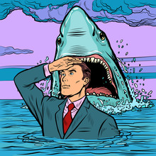 A Successful Businessman Is Not Afraid Of A Shark Attack