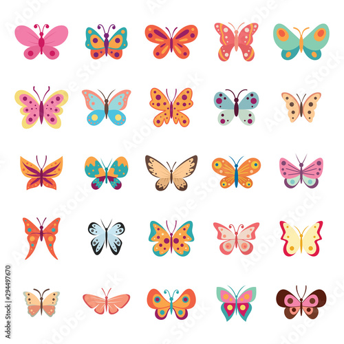 Color flat butterfly set. Butterflies vector collection spring. Vintage insects vector collection isolated on white background - 294497670
