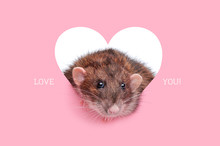 Card With Rat In Heart And Loveyou Inscription