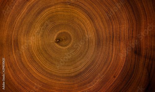 Fotografiet  Old wooden mahogany tree cut surface