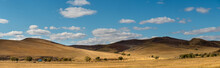 Panorama View Of Vast Grasslan...