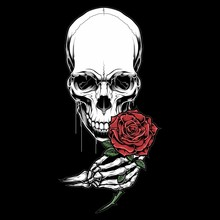Skull Head Holding A Rose,.vector Hand Drawing,Shirt Designs, Biker, Disk Jockey, Gentleman, Barber And Many Others.isolated And Easy To Edit. Vector Illustration