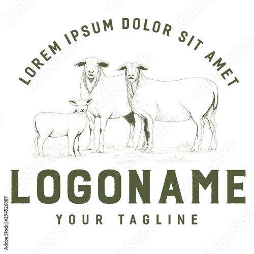 Rustic goat logo Canvas Print