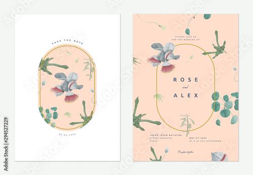 Fototapeta Flowers And Foliage Wedding Invitation Card Template Design Eucalyptus Rhodantha Flowers And Various Green Leaves On Light Orange