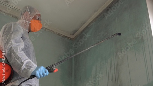 Fototapeta Removing mold