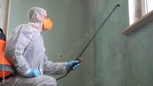 Removing mold Canvas Print