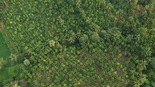 Spectacular Aerial Footage Of ...