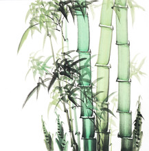 Bamboo Of Traditional Chinese Painting