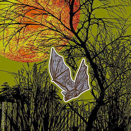 Halloween pipistrello Wallpaper Mural