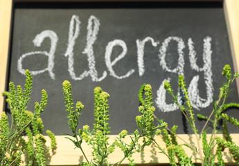 Ragweed plant (Ambrosia genus) and word