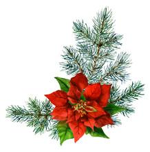 Christmas Arrangement Consisti...