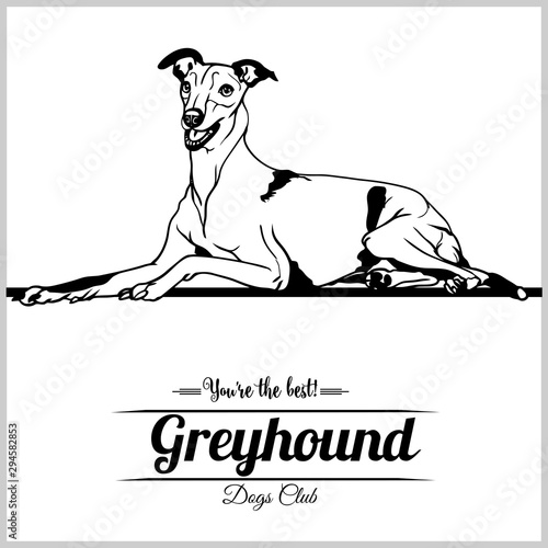 Fotografía Greyhound Dog - vector illustration for t-shirt, logo and template badges