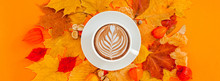 Coffee Latte Cup In Dry Autumn...