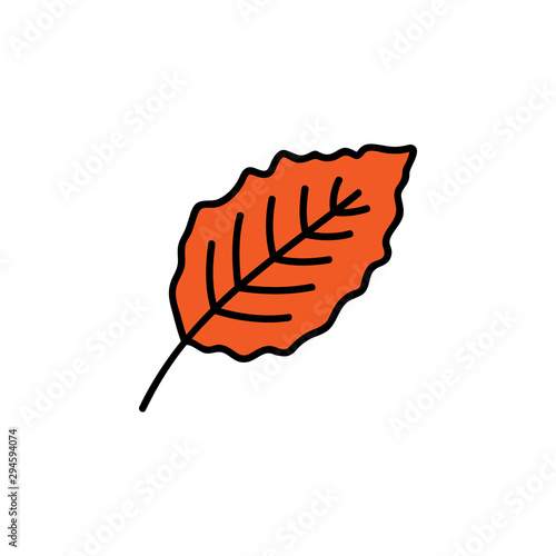 Fotografija  Leaf vector illustration