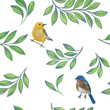 Drawn leaves and birds on a white background.