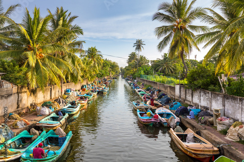 The colorful boats are docked along the banks of Hamilton's Canal in fishing village district of Negombo, Sri Lanka Wallpaper Mural