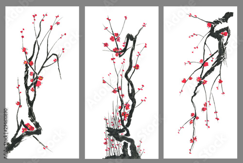 Set of sakura blossom branches Canvas Print