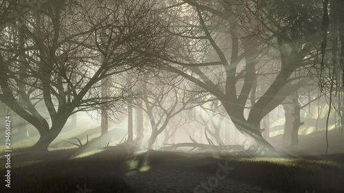 tajemniczy-nawiedzony-las-z-ostatnimi-promieniami-slonca-przeswitujacymi-przez-przerazajace-sylwetki-martwych-drzew-o-mglistym-swicie-lub-zmierzchu-fantazja-lasu-scenerii-3d-ilustracja