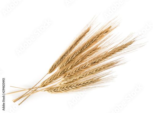 Cuadros en Lienzo Ears of rye isolated on a white