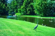 Beautiful Park With A Pond, Du...