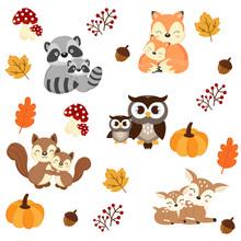 Woodland Animals Background. Raccoon, Fox, Squirrel, Owl And Deer Cartoon.
