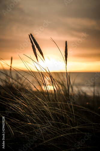 sunset over beautiful beach in sweden