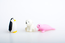 Penguin, Seal And Polar Bear R...