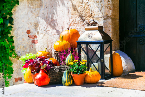 Autumn decoration with pumpkins. still life outdoor, ideas for gardening
