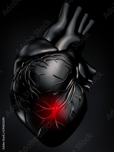 Fotografia Human heart model - 3D illustration